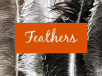 feathers-button-vibes.png