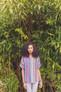 Rowan Selects - Kaffe Fassett Handknit Cotton - Garden Party Stripe