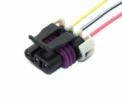LS1 3 Pin  sc 1 st  Wiring Specialties : e36 ls1 wiring harness - yogabreezes.com