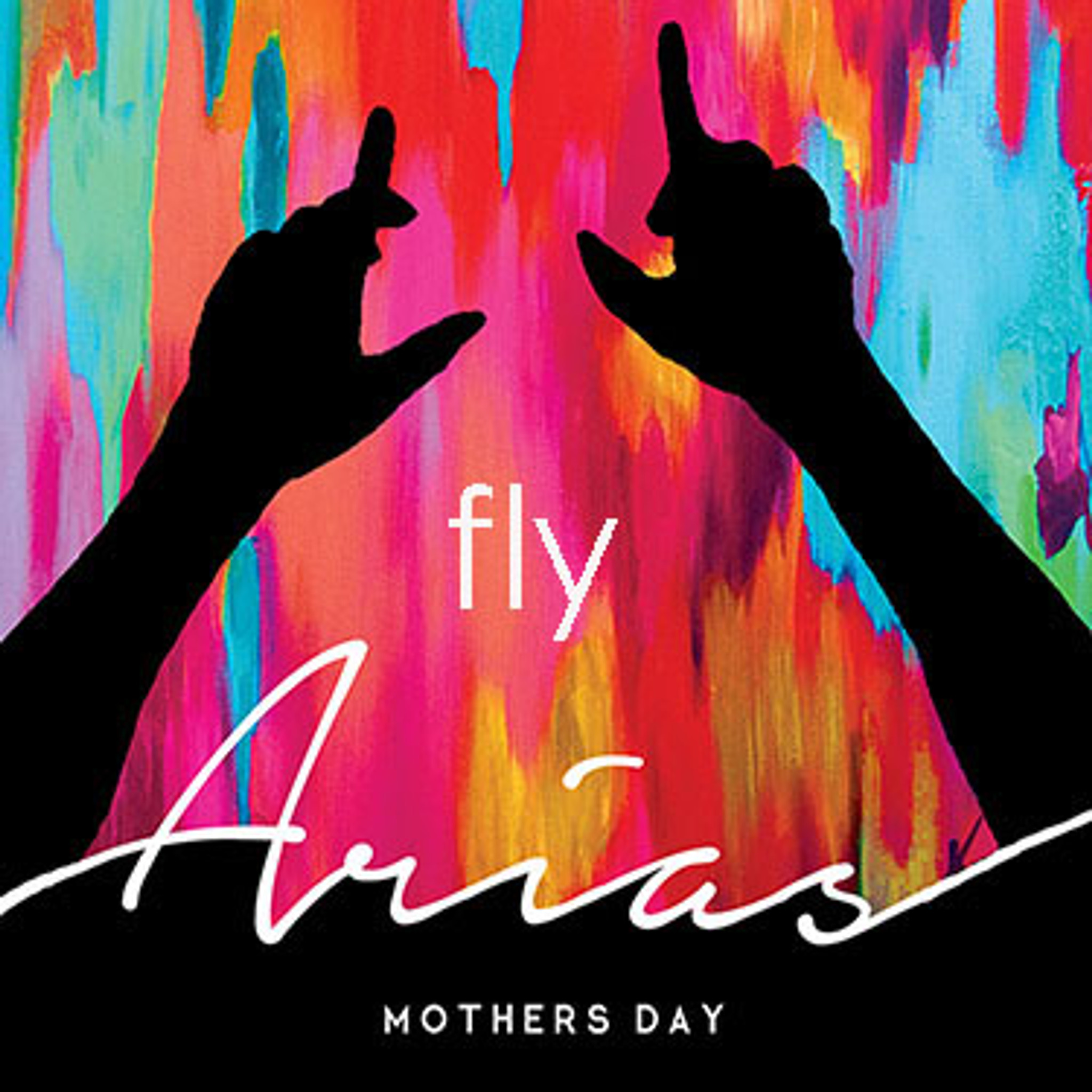 """Fly"" delivers beautiful piano forward inspiration...with a mid range that is slowly introduced...the bass notes build up to a drop kicking off an electronic dance music and suprising latino finish!!!  ""Fly"" pairs greatly with a glass of wine just before you dance.  Proceeds benefit David Ortiz Children's Foundation"