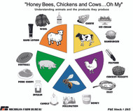 Honey Bees, Chickens and Cows...Oh My!