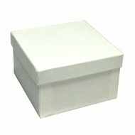 "White Swirl 3 1/2"" Paper Box with cotton fill"