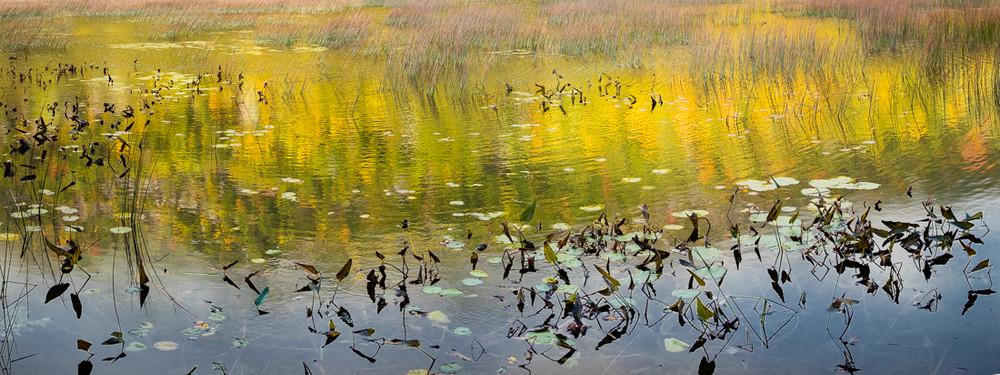 Dreamy Pond Panoramic