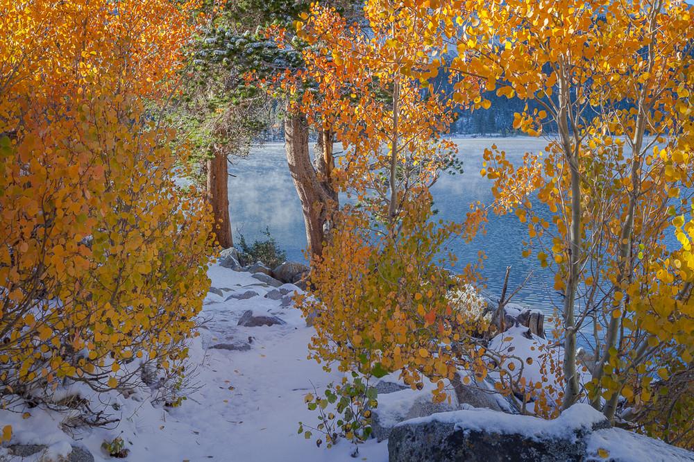 Changing Aspens - Rock Creek Lake