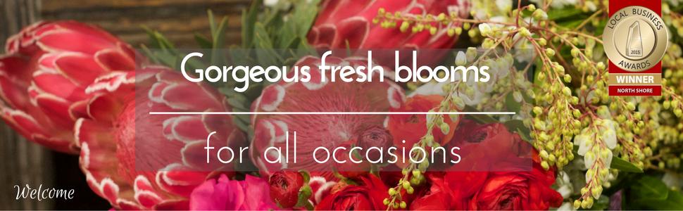 Pure-flowers-florist-flower-delivery-sydney-lane-cove