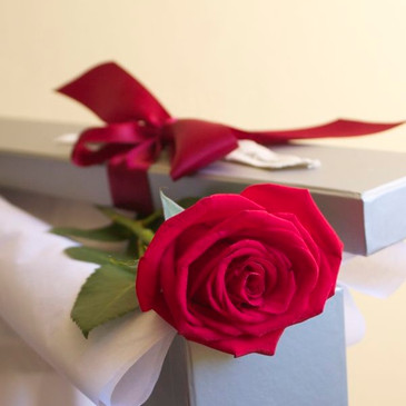 Single long stemmed red rose in a gift box