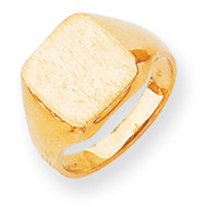 Signet Ring 14k Gold RS313