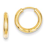 Hollow Hoop Earrings 14k Gold Polished TL610