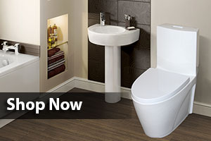 luxury-toilet-baner1.jpg