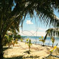 Caye Caulker Hidden Beach View