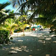 Caye Caulker Sandy Path
