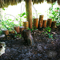 Bacab Short Bamboo Poles