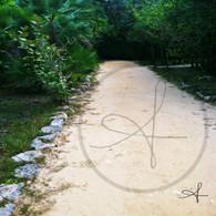Bacab Pathway