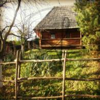 Castle Village Wooden House