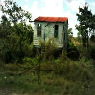 Belize Jungle Shack