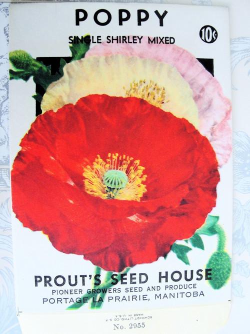 Vintage Seed Packet Poppies
