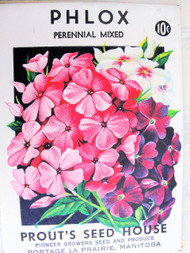 Vintage Seed Packet Phlox Flowers