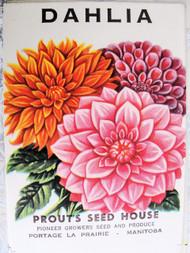 Vintage Seed Packet Dahlia Flowers