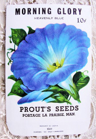 Antique SEED PACKET Colorful Blue Morning Glory Flowers Suitable To Frame Cottage Chic Decor Scrapbooking Crafts Weddings Gifts