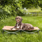 Lare portable dog cot