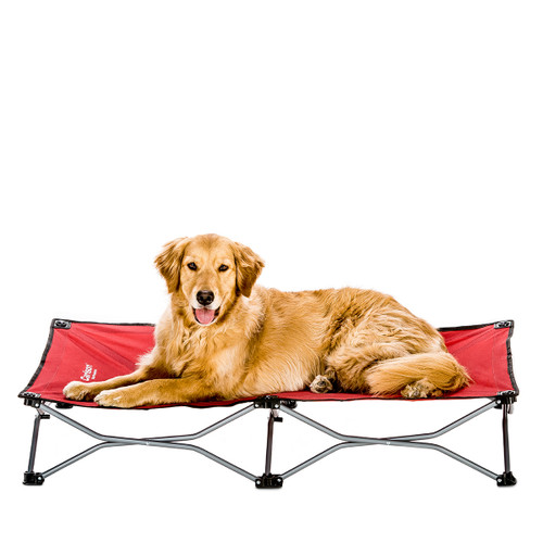 Captivating Carlson Large Portable Dog Cot