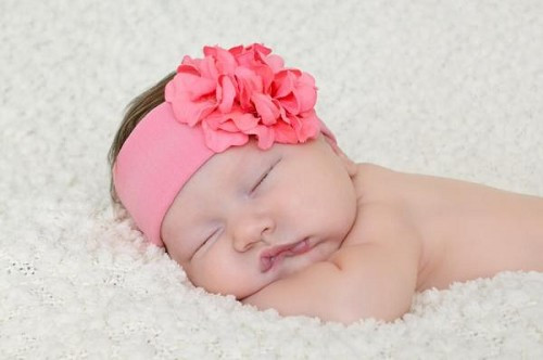 Candy Pink Soft Headband with Candy Pink Small Geraniums