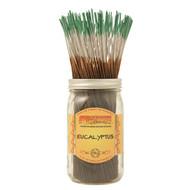 Eucalyptus - 10 Wild Berry® Incense sticks