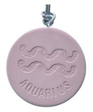 Aquarius Zodiac Diffuser/Air Freshener (Vanilla)