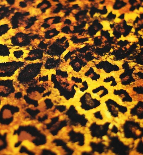 Leopard Print Fabric,Animal Print Fabric, Four way Stretch Fabric, Printed Spandex Fabric by the Yard