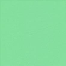 Matte Stretch Fabric - Four way Stretch Nylon Spandex Fabric- Mint