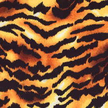 Printed Spandex Fabric - Tiger Animal Print on Four Way Stretch Matte Tricot