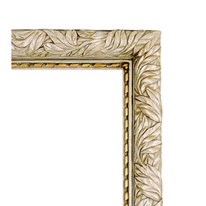 Natural Elegance Frame 20x24 Antique Silver and Gold