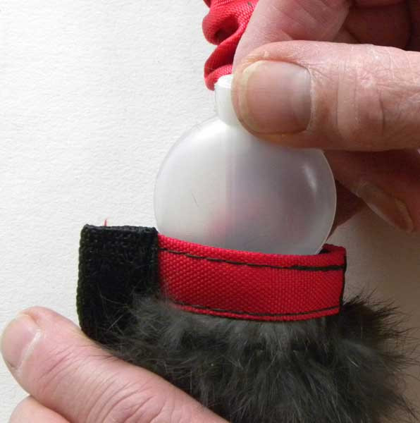 Replaceable squeaker fits inside a narrow pocket.