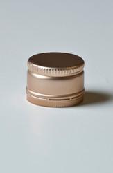 25x19mm Gold Twist-Cap