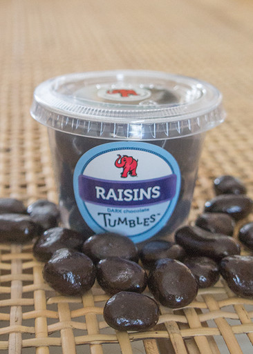 Dark Chocolate Premium Raisins Medium Packaged