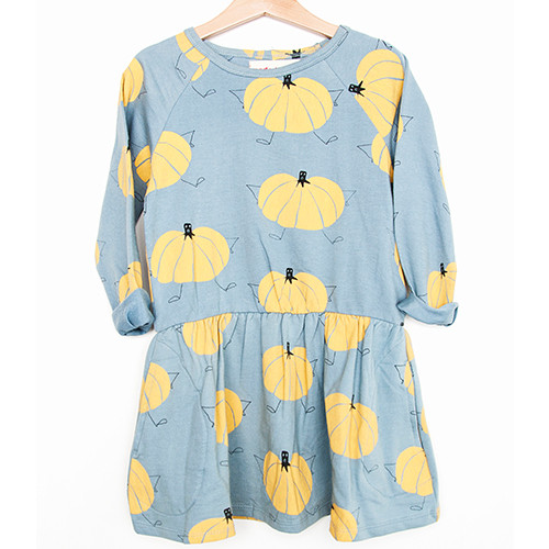 Organic Dress, Pumpkins