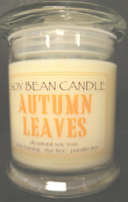 Imagine yourself walking through the woods on a cool, crisp fall day with leaves swirling around you!  Ahhh...