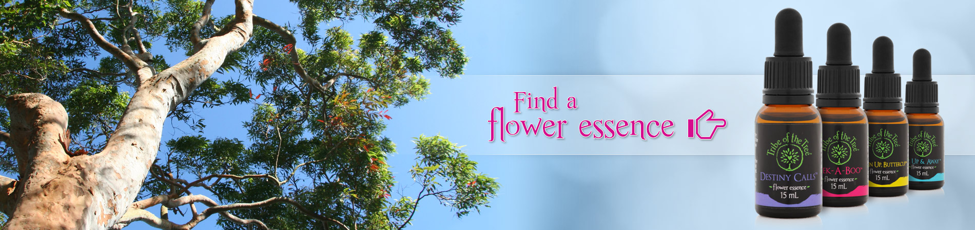 Find a Flower Essence