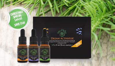 Dream Activator flower essence kit