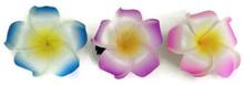 Hawaiian Hair Clips 3 pk-Blue, Purple, Pink