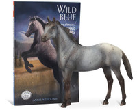 Wild Blue Book and Model Set