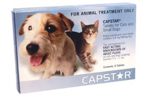Capstar Flea Treatment for Cats & Dogs 0.5kg - 11kg