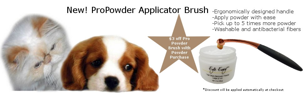 powder-brush-banner-final.jpg