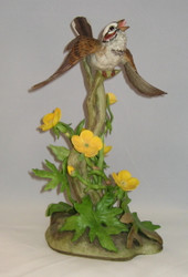 Lark Sparrow 400-35