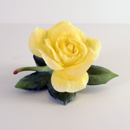 Yellow Rose Of Texas F3184