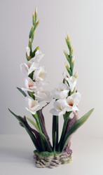 Gladiolis (White) F267W