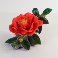 Red Camellia F215