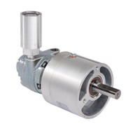 Gast 1UP-NRV-4-GR11 air powered gear motor