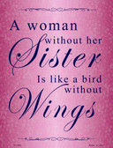 A Woman Without Her Sister Wholesale Metal Novelty Parking Sign
