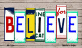 Believe Wood License Plate Art Wholesale Novelty Metal Magnet